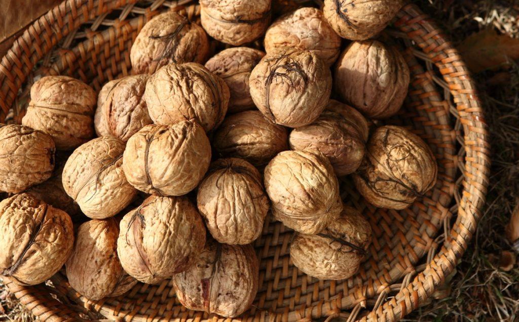 Грецкий орех лечение простатита лечение простатита луком с чесноком