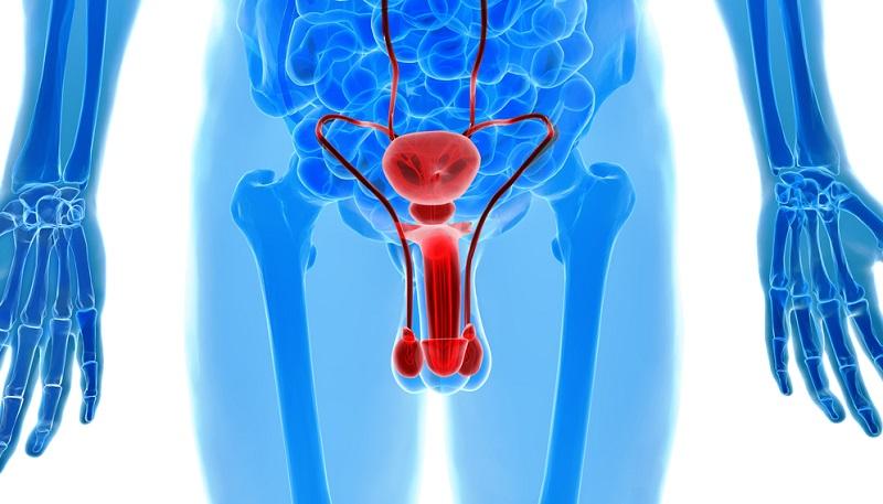 Уретропростатит: симптомы и способы лечения