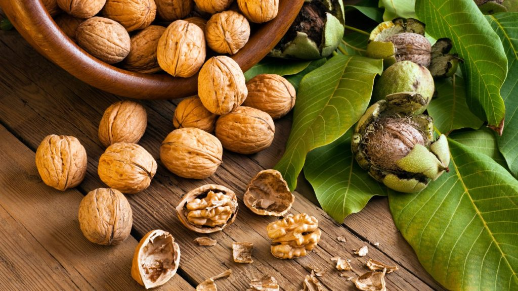 Лечение простатита грецкими орехами